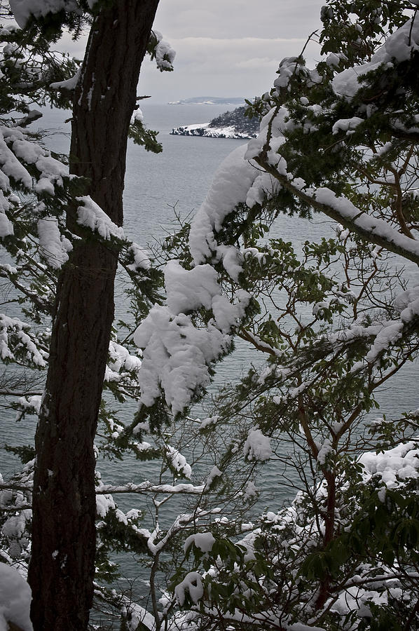 Deception Pass Photograph - Decembers Point by Tom Trimbath