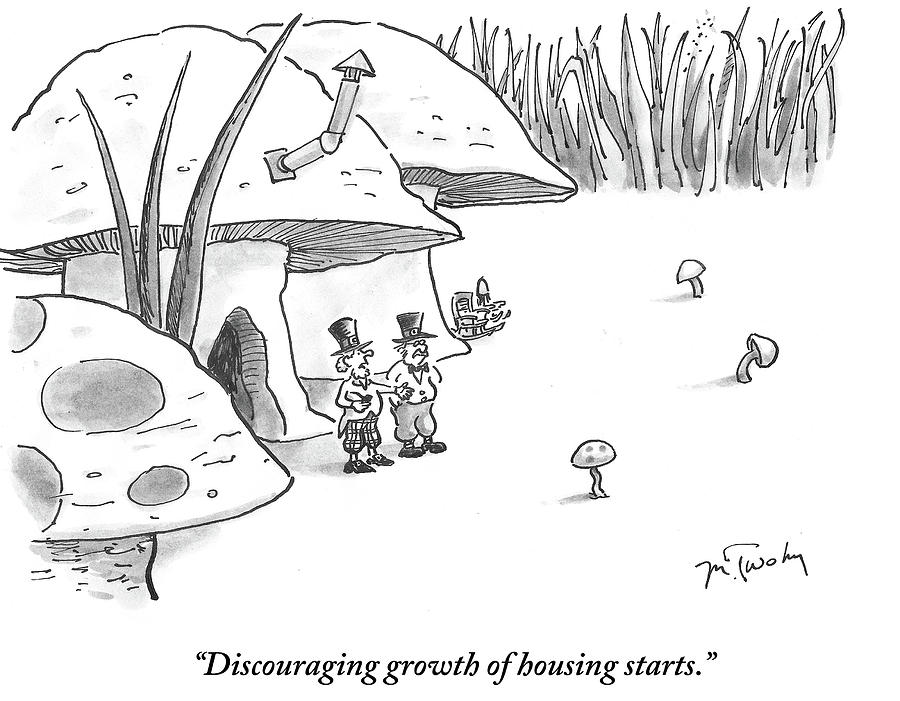 Cartoon Drawing - Discouraging Growth Of Housing Starts by Mike Twohy