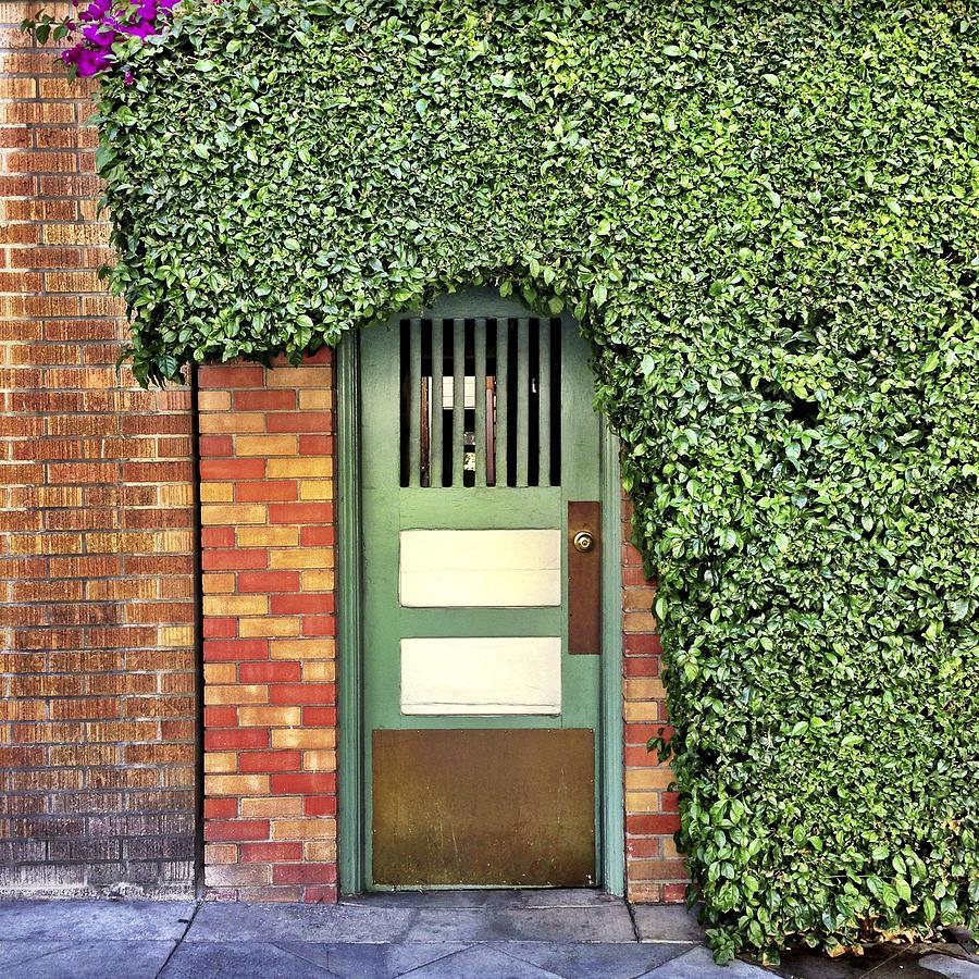 Door And Hedge Photograph by Julie Gebhardt
