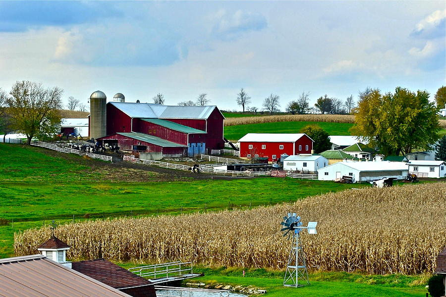 Farm Photograph - Down On The Farm by Frozen in Time Fine Art Photography