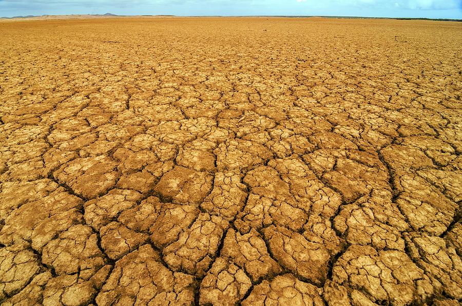 Desert Photograph - Dry Cracked Earth by Jess Kraft