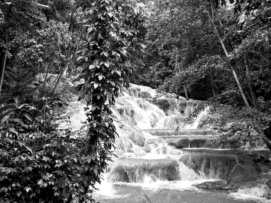 Jamaica Photograph - Dunns River by Thomas Leon