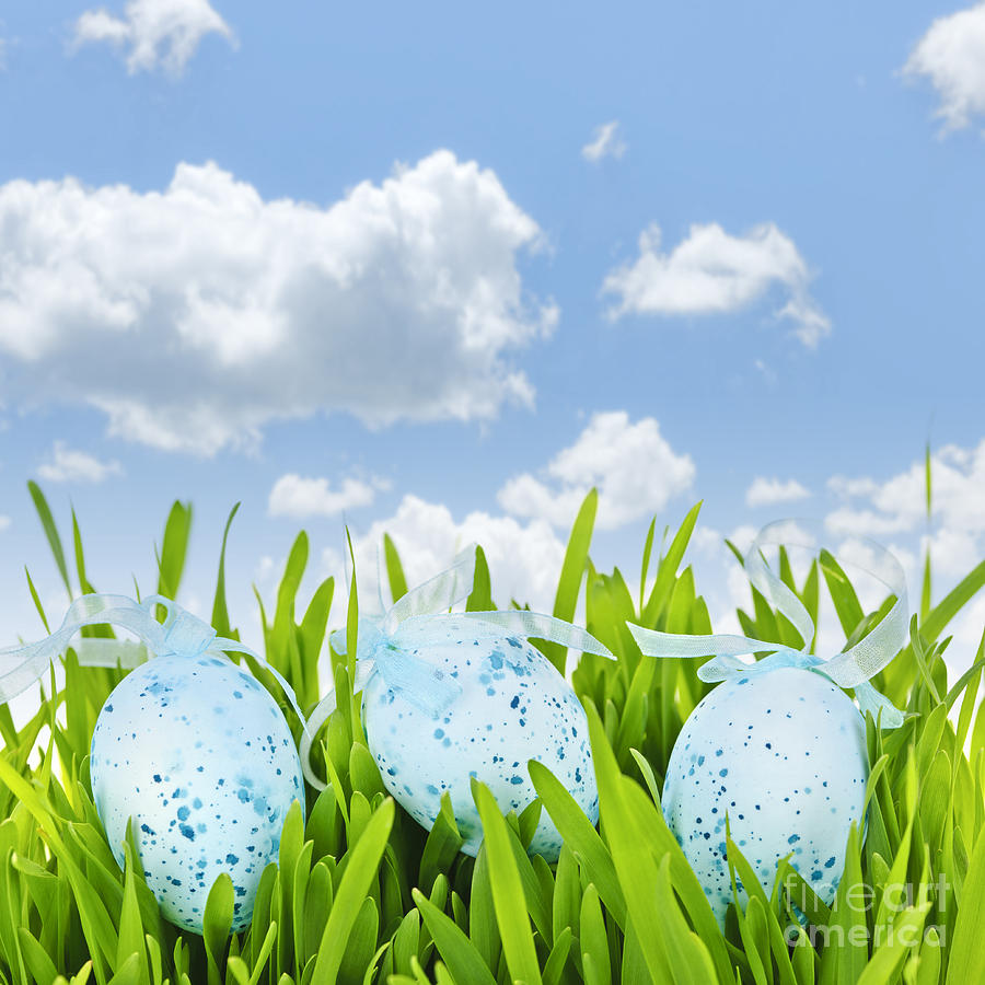 Easter Eggs In Green Grass Photograph