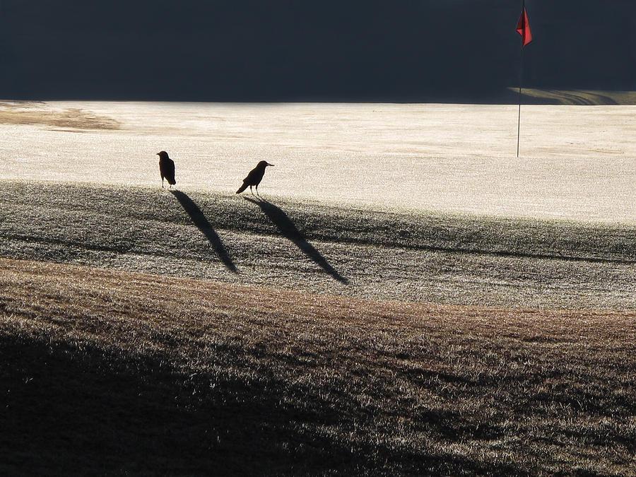 Crows Photograph - Eighteenth Hole by Monika A Leon