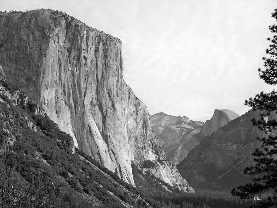 El Capitan Photograph - El Capitan by Thomas Leon