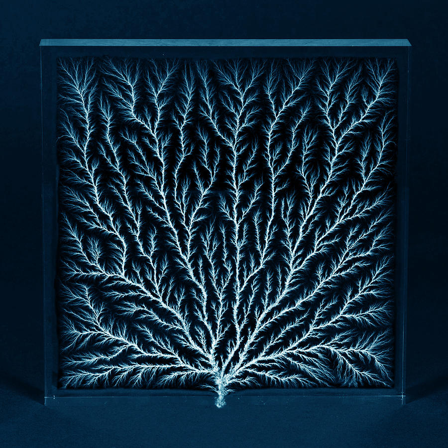 electron tree or lichtenberg figure photograph by science source