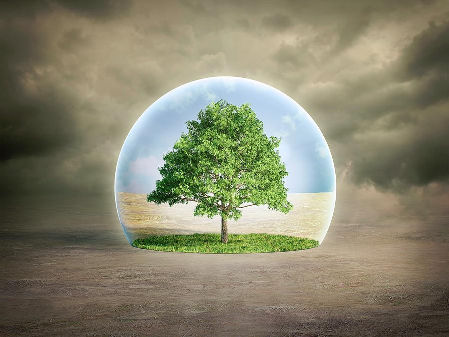 Concept Photograph - Environmental Protection by Andrzej Wojcicki/science Photo Library