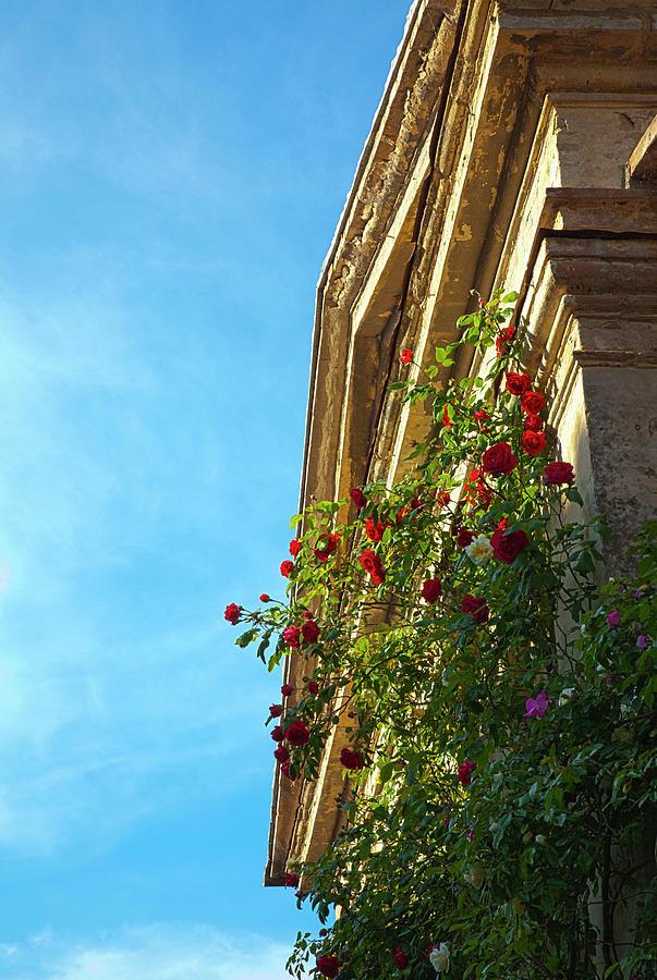 Baptistery Photograph - Europe, Italy, Tuscany by Terry Eggers