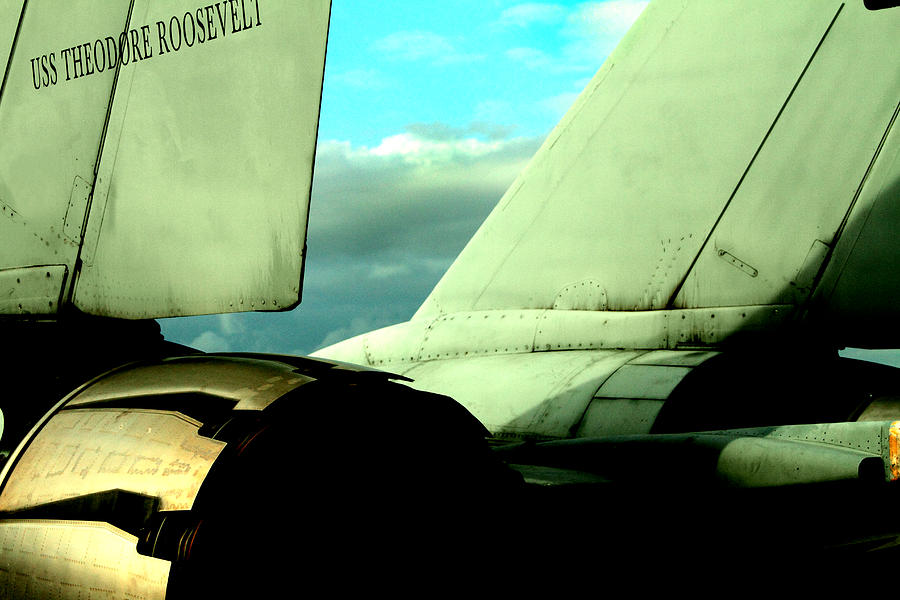 Grumman Photograph - F-14 Tomcat by Maxwell Amaro