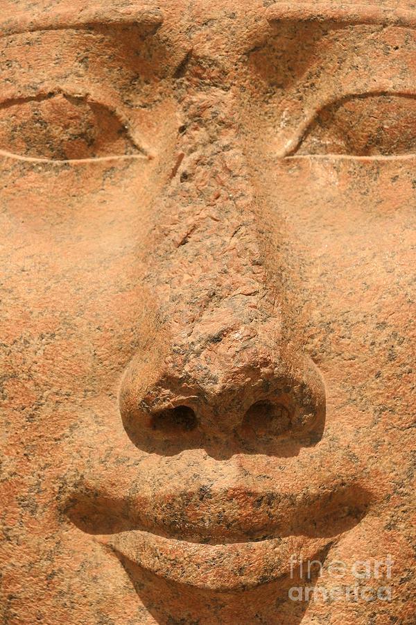 Hathor Photograph - Face Of Hathor by Stephen & Donna OMeara