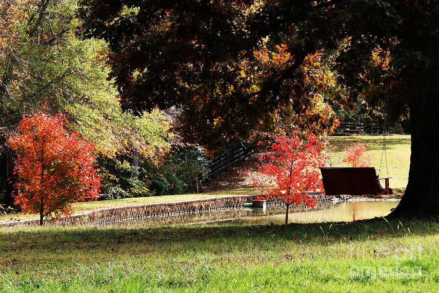 Fall Colors Photograph by Jinx Farmer