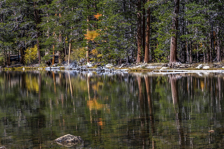 California Photograph - Fall Reflections by Cat Connor