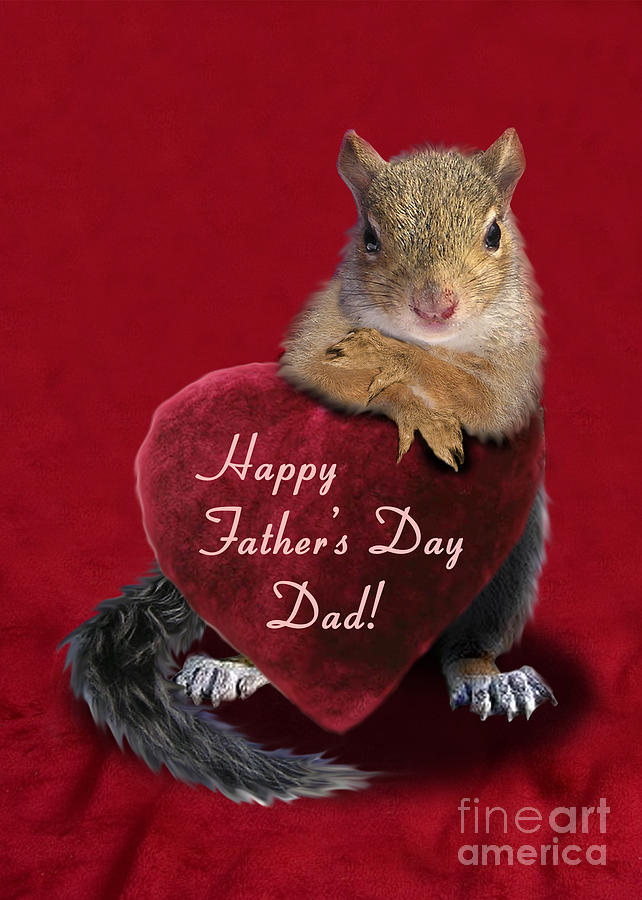 Holiday Photograph - Fathers Day Squirrel by Jeanette K