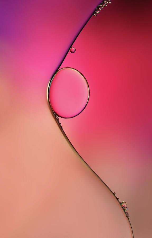 Macro Photograph - Femme by Heidi Westum
