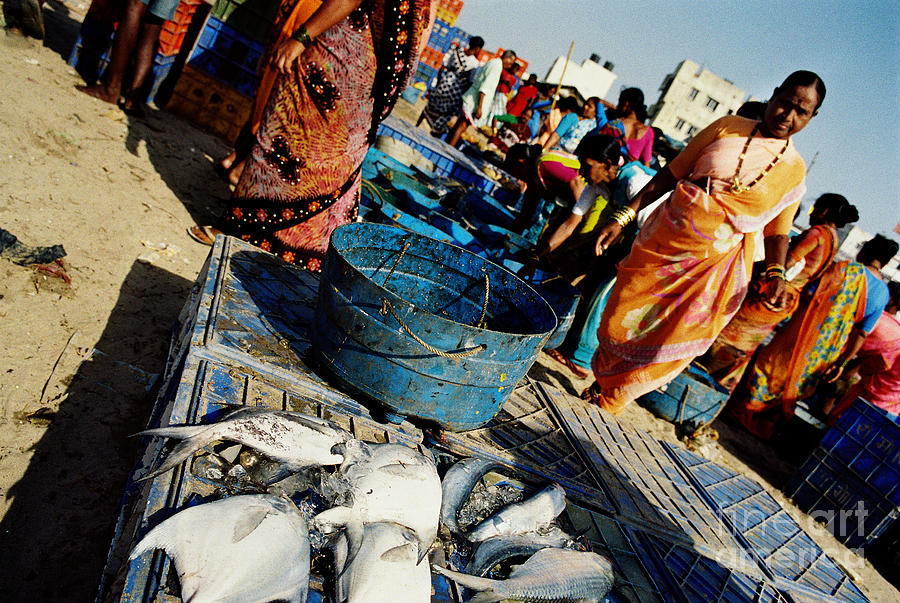 Fish Market Photograph by Candido Salghero