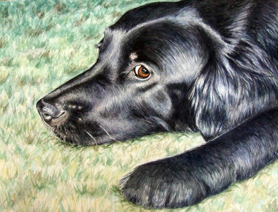 Dog Painting - Flat Coated Retriever by Nicole Zeug