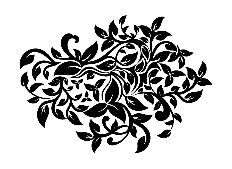 floral ornament drawing by olivera antic