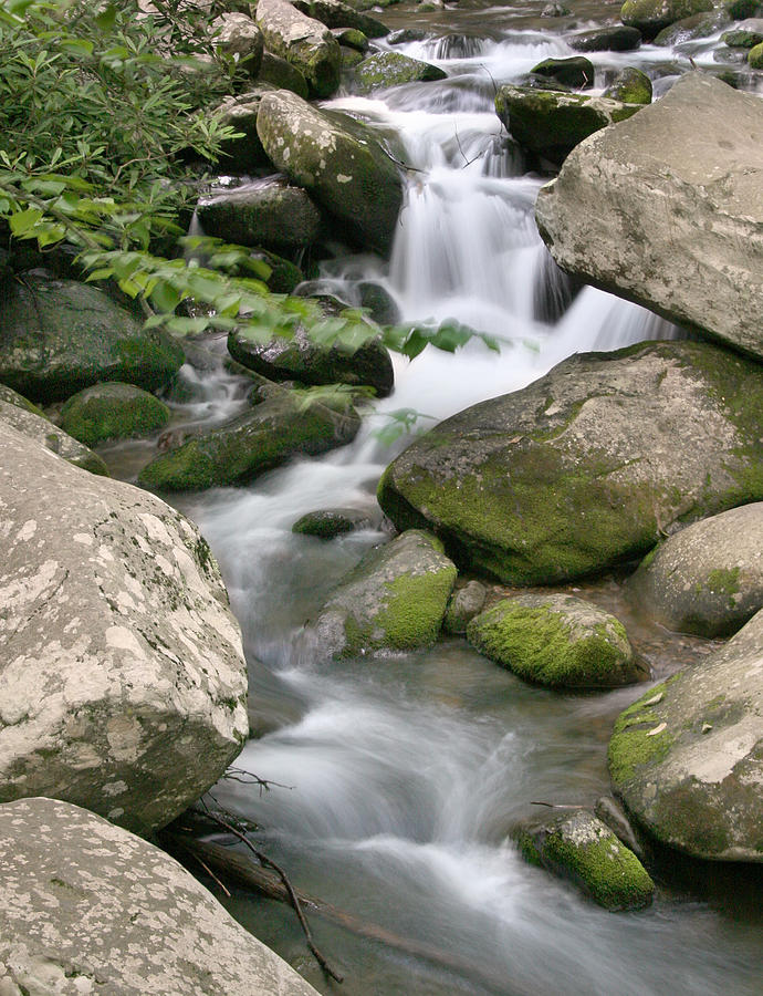 Smoky Mountain Photograph - Flow by Cindy Haggerty