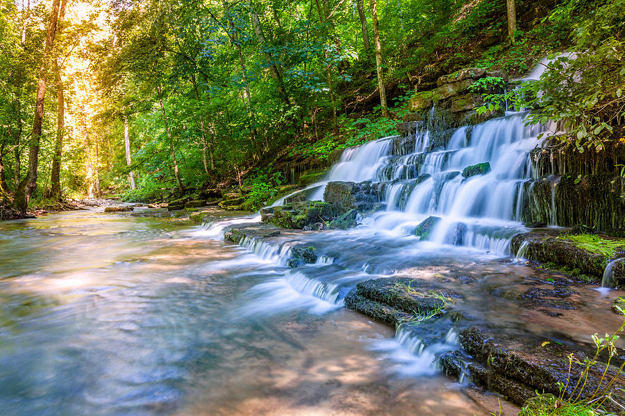 Pleasant Hill Photograph - Forest Stream And Waterfall by Alexey Stiop