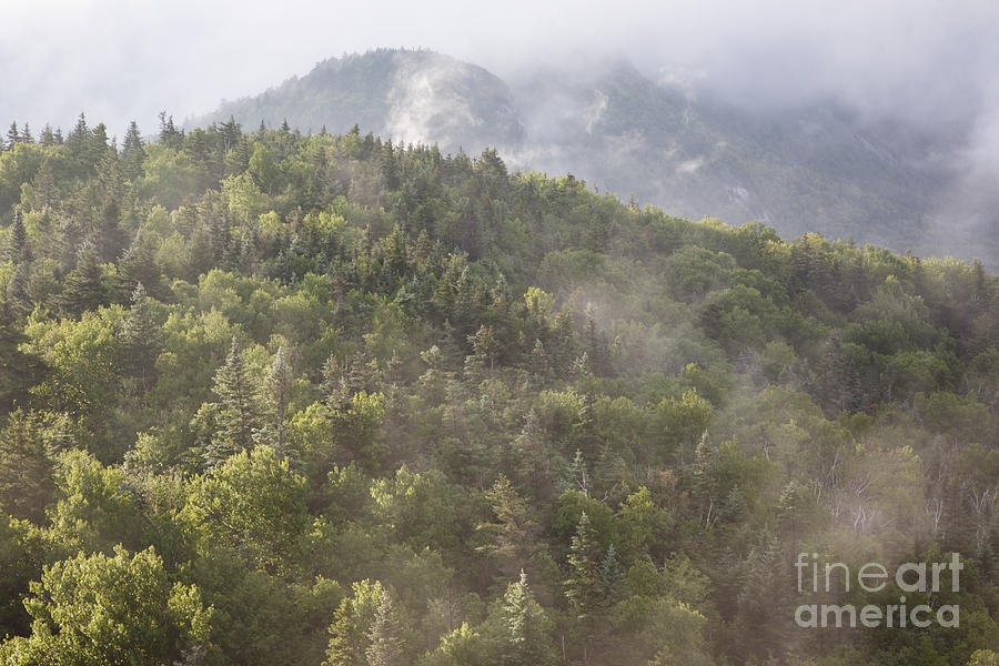 Franconia Notch Photograph - Franconia Notch State Park - White Mountains Nh Usa by Erin Paul Donovan