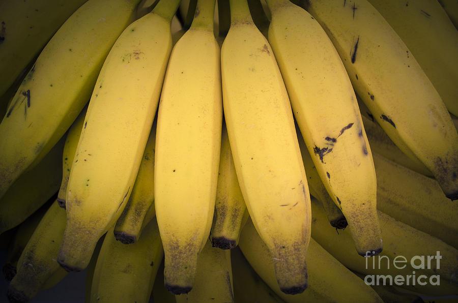 Banana Photograph - Fresh Bananas On A Street Fair In Brazil. by Ricardo Lisboa