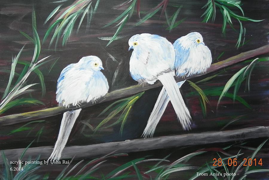 Birds Painting - Friendship by Usha Rai
