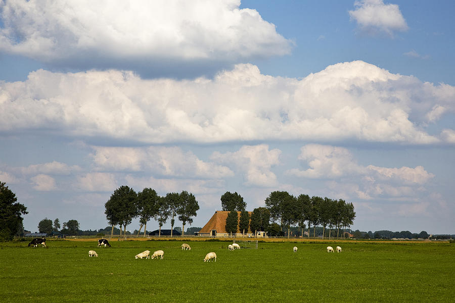 Friesland Photograph - Friesland by Frits Selier