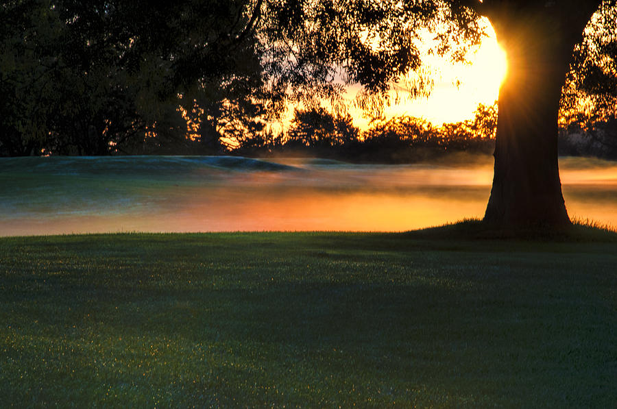 Fog Photograph - Frost On The West Course by Gej Jones