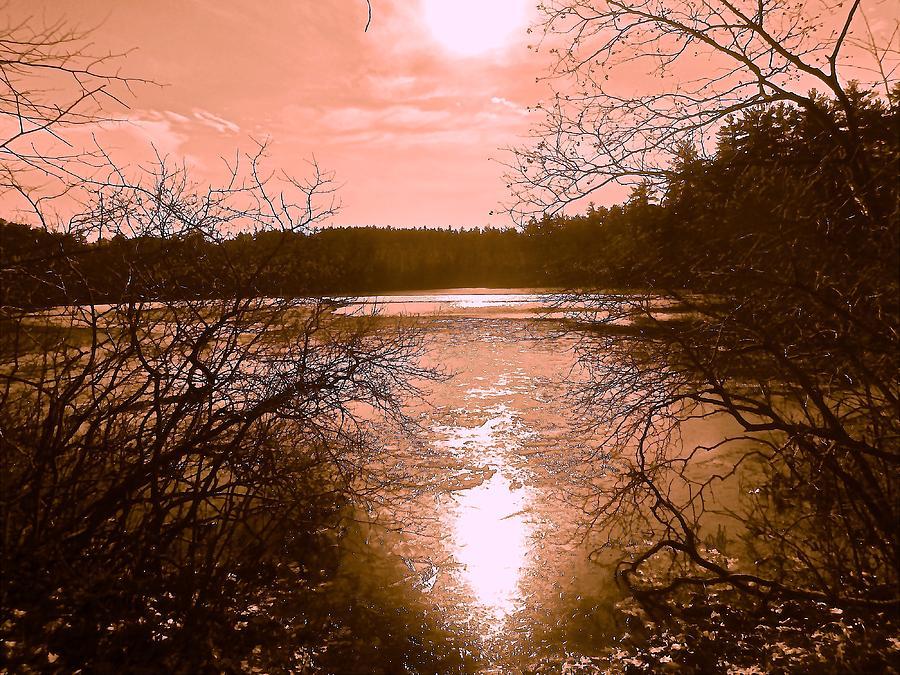 Frozen Lake Photograph - Frozen by Elizabeth Tillar
