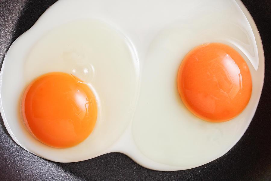 Albumin Photograph - Frying Eggs by Tom Gowanlock