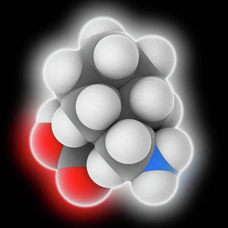 Artwork Photograph - Gabapentin Drug Molecule by Laguna Design