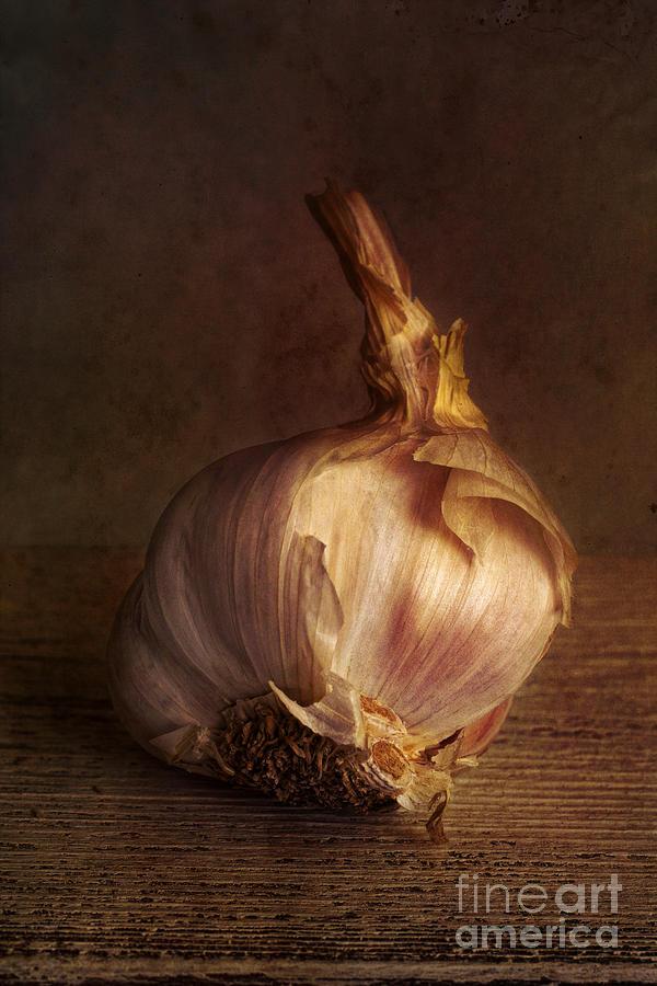 Garlic Photograph - Garlic 2 by Elena Nosyreva