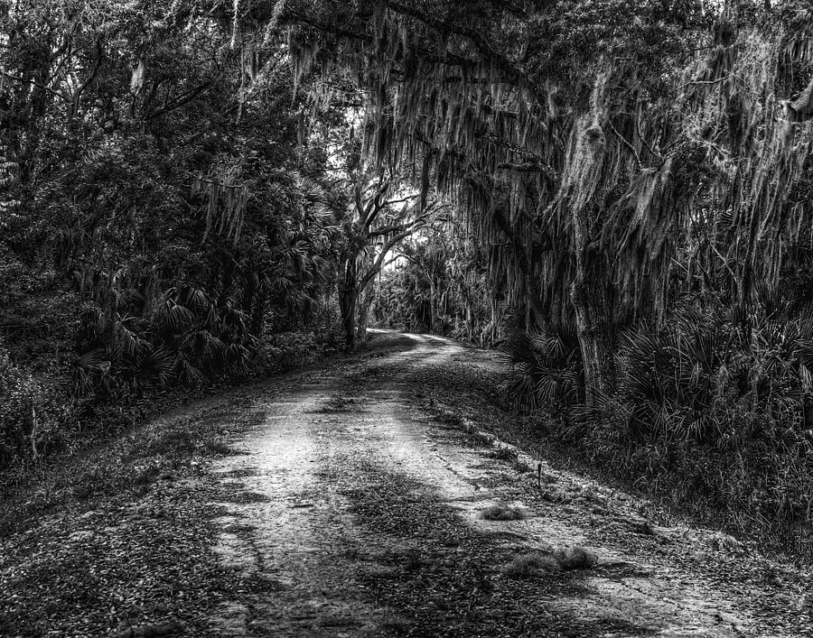 Landscape Photograph - Going Home by David Mcchesney