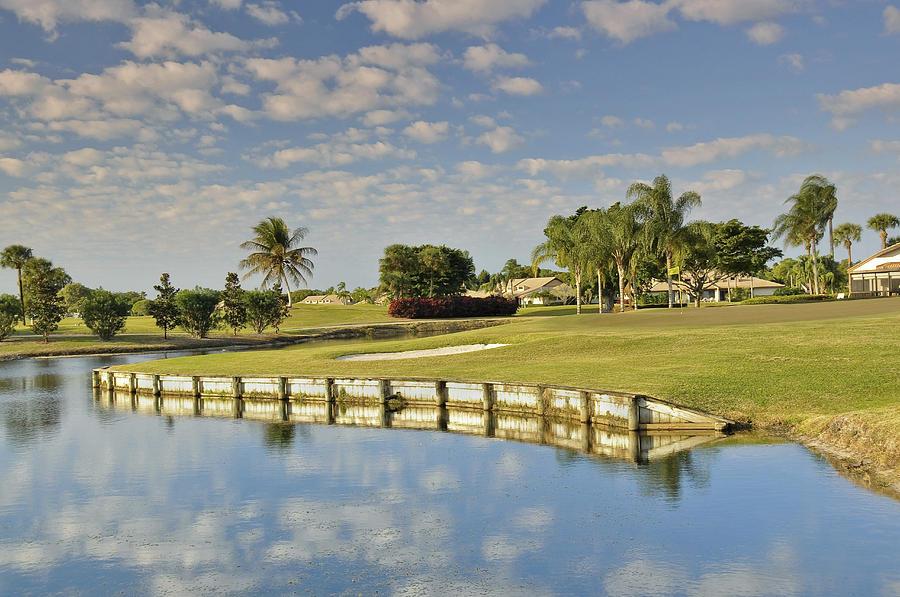 Florida Photograph - Golf Course by M Cohen