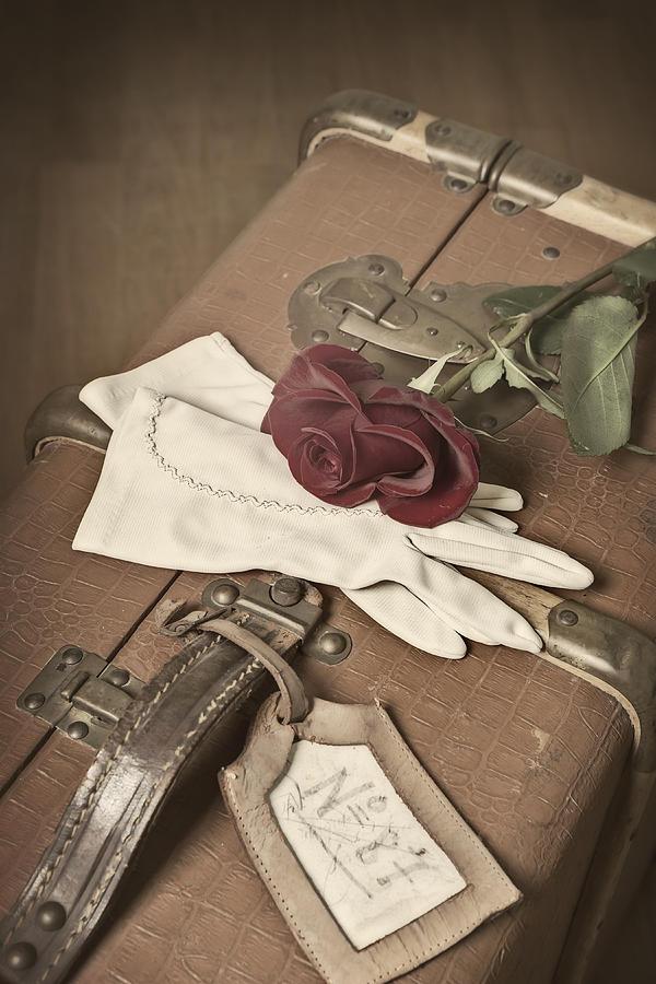 Rose Photograph - Goodbye by Joana Kruse
