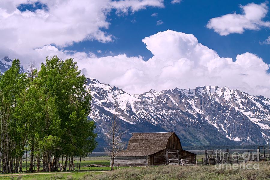 Ansel Adams Photograph - Grand Teton Np by Juergen Klust