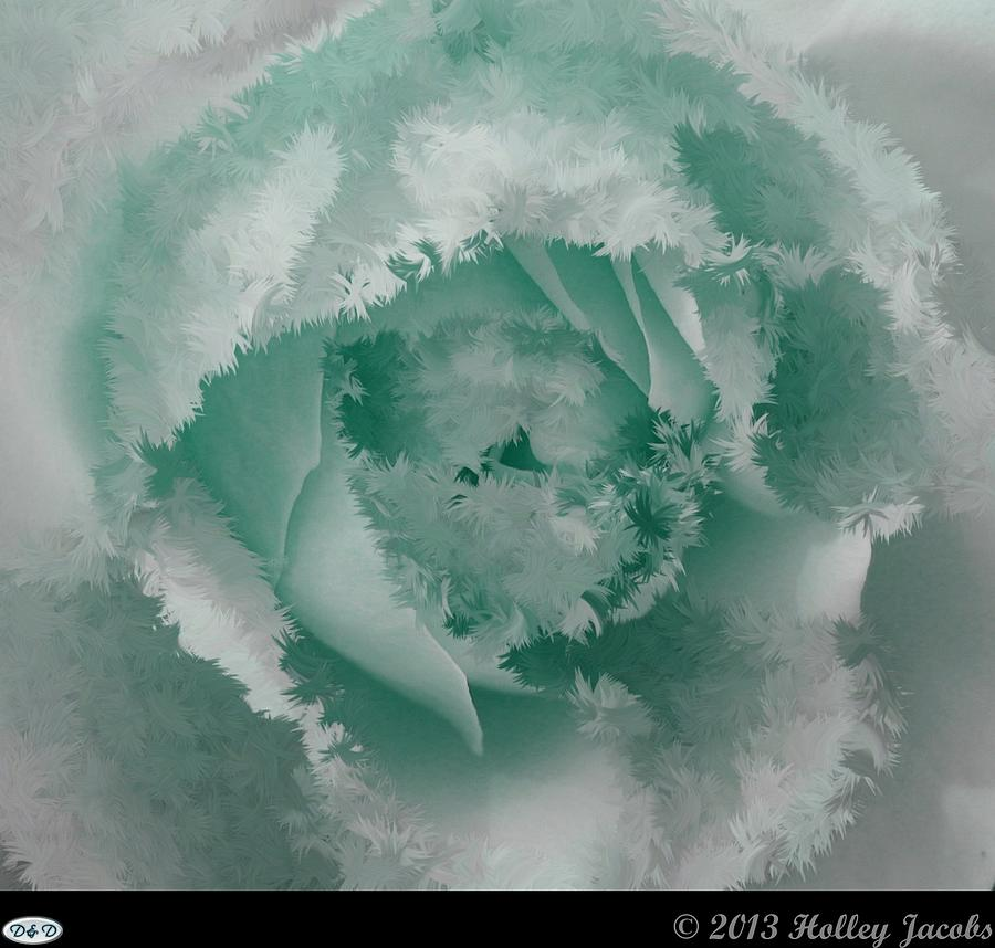Abstract Digital Art - Grannys Rose Teal by Holley Jacobs