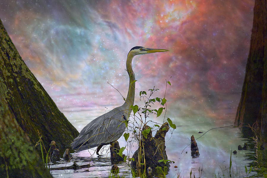 Great Blue Heron In A Heavenly Mist by J Larry Walker