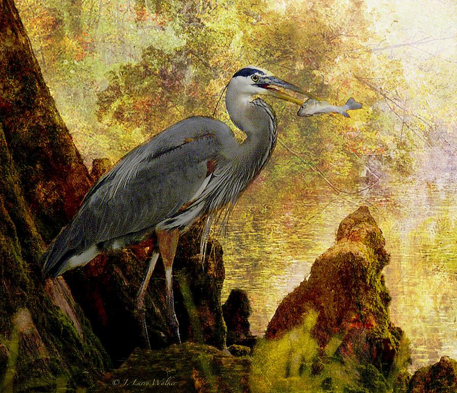 Great Blue Heron Morning Snack by J Larry Walker