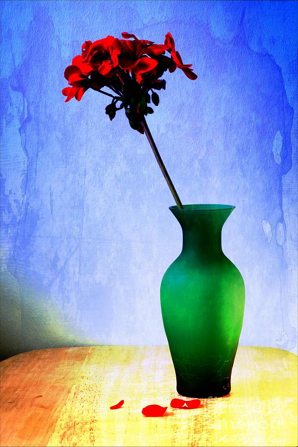 Photogs Photograph - Green Vase by Donald Davis