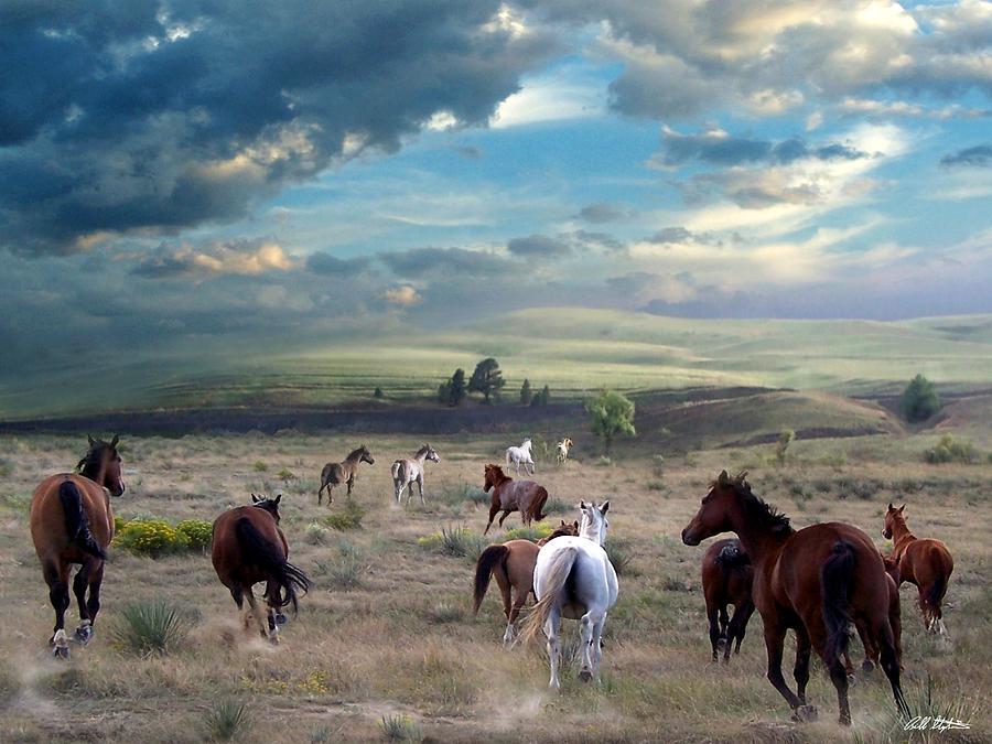 Horses Digital Art - Greener Pastures by Bill Stephens