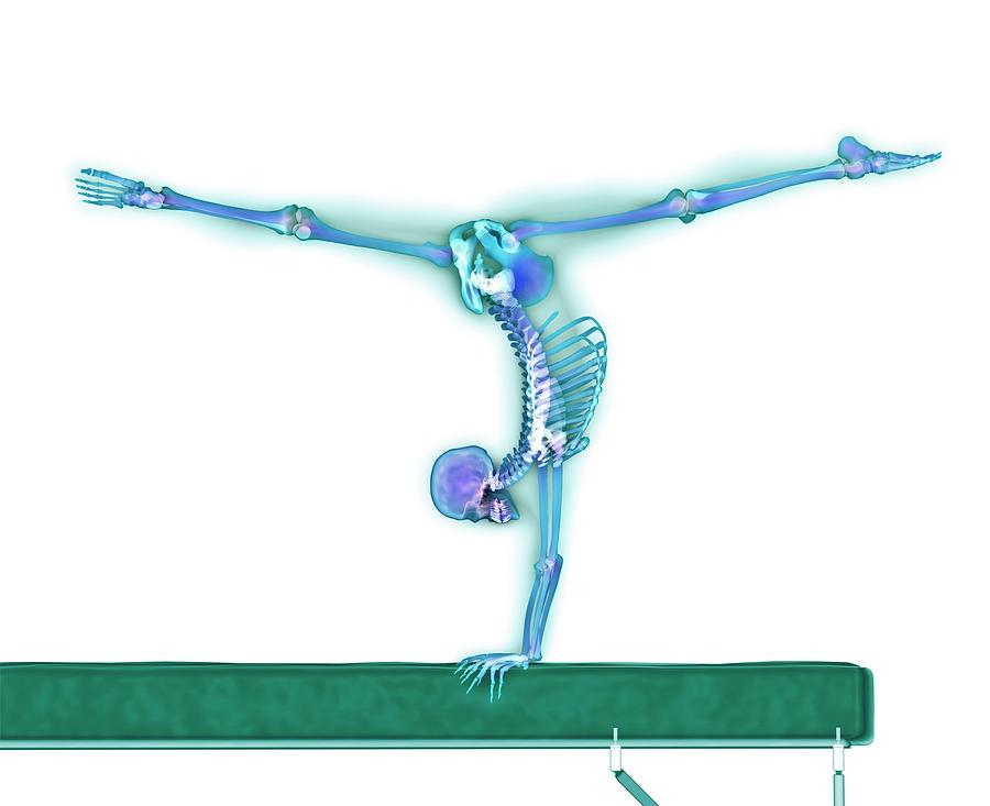 Human Photograph - Gymnast Balancing On A Beam by Gustoimages/science Photo Library