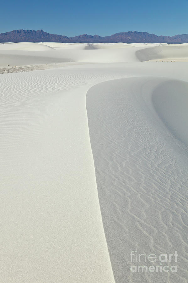 Mp Photograph - Gypsum Dunes In White Sands by Yva Momatiuk John Eastcott