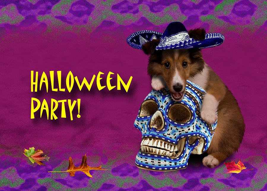 Halloween Party Photograph - Halloween Party Sheltie Puppy by Jeanette K