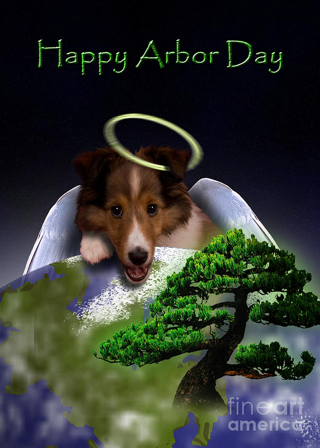 Happy Arbor Day Photograph - Happy Arbor Day Angel Sheltie by Jeanette K