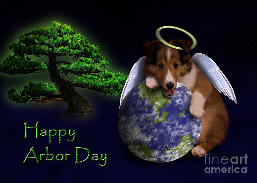 Happy Arbor Day Photograph - Happy Arbor Day Sheltie Puppy by Jeanette K