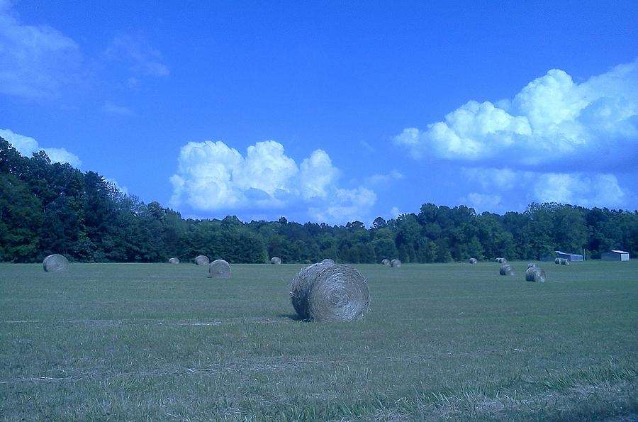Hay Photograph - Haystacks by Stacy C Bottoms