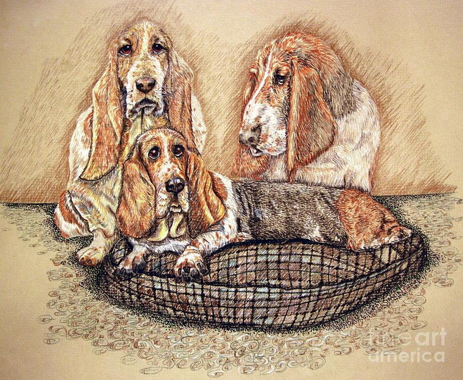 Basset Hound Drawing - Hesser Puppies by Linda Simon