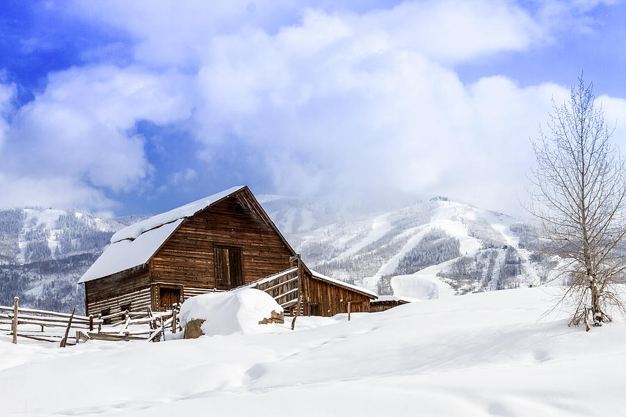 Champagne Powder Photograph - Historic Steamboat Springs Barn by Teri Virbickis