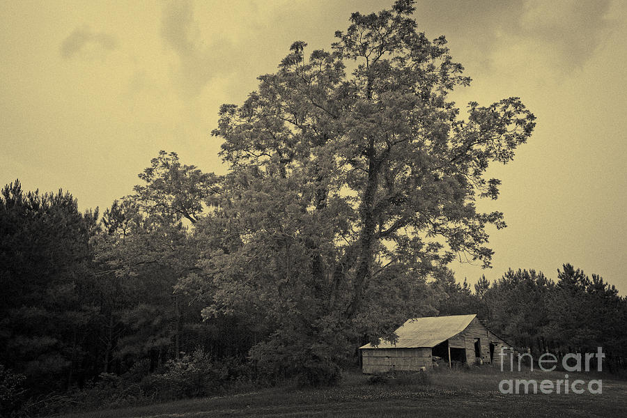 Barn Photograph - Howard Barn by Russell Christie